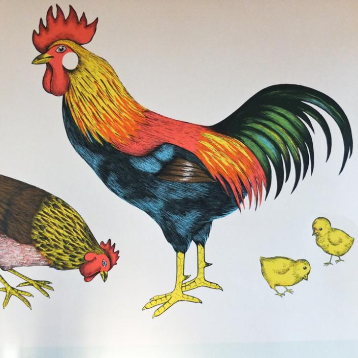 Detail aus Hahn und Henne Schaubild