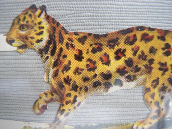 Leopard Tier Bild