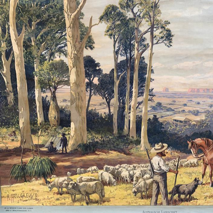 Vintage Schaubild / Schultafel Australische Landschaft