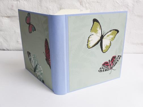 Schmetterlings Fotoalbum